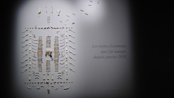 Ossuaire by Diane Dubeau