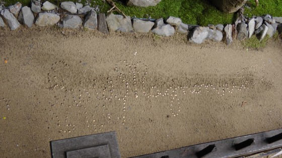 What appear to be thumbtacks placed in the sand in order to spell something, but I can't make out head or tail. It just looks pretty.