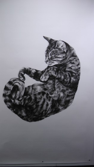 "Kate Puxley: Animals in the City: Gatto Italiano #4, Charcoal on Paper, approx 85"" x 52"""