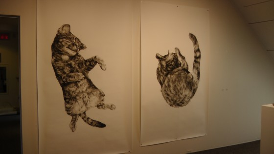 "Kate Puxley, Animals in the City: Gatto Italiano #1 & #2, charcoal on paper. approx 85"" x 52""/ch"